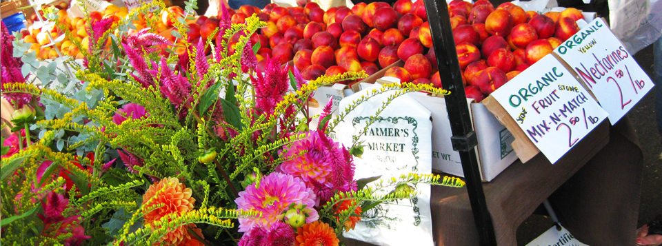 <b>Let's grow</b> - Our farmers market is thriving. Let's help it grow and continue to be an integral part of our beautiful community.