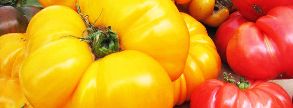 <b>You are what you eat</b> - So eat fresh and local and support our farmers market and its participants.
